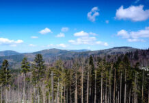 Wisła – widok na góry
